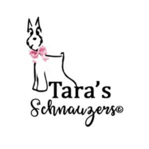 taras schnauzers logo