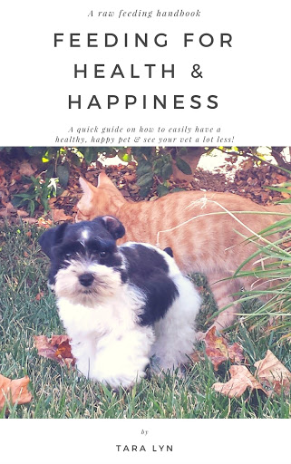 FEEDING-YOUR-MINIATURE-SCHNAUZER FOR-HEALTH-&-HAPPINESS