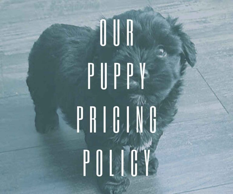 our-puppy-pricing-policy