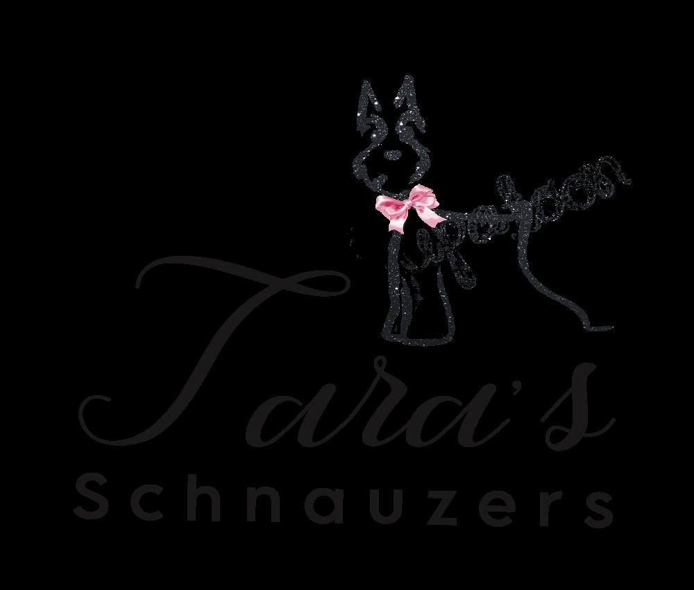 Tara's Schnauzers